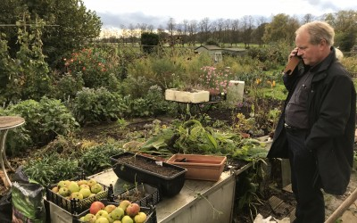 Roger Lee at his York allotment